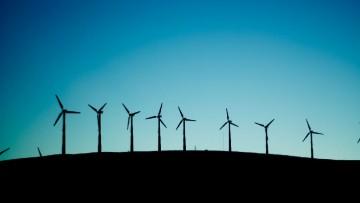 Green economy contro la crisi: un'azienda italiana su quattro investe sul verde