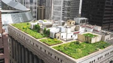 Istat, in alcune citta' non piu' di 9 mq di verde per cittadino