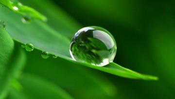 Green economy, a Ecomondo focus sul settore