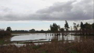"""Zambrano sull'alluvione in Sardegna: """"simili tragedie non devono piu' ripetersi"""""""