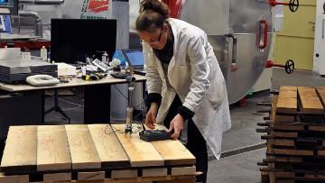 Il legno del futuro? E' essiccato sottovuoto