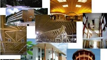 Gli scenari possibili del legno come materiale edile, secondo Julius Natterer