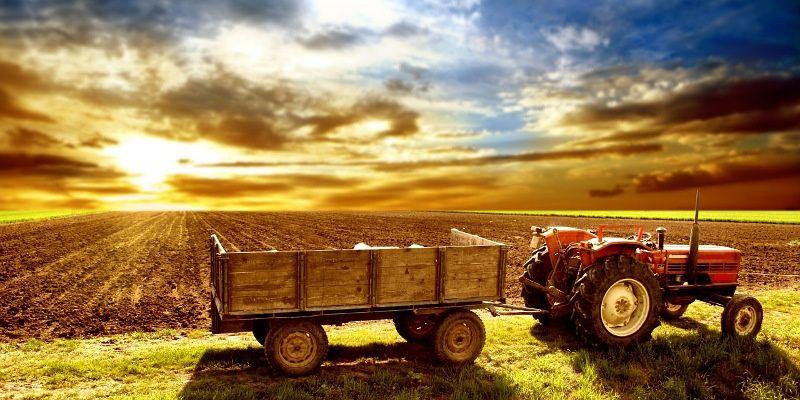 wpid-24227_agricoltura.jpg