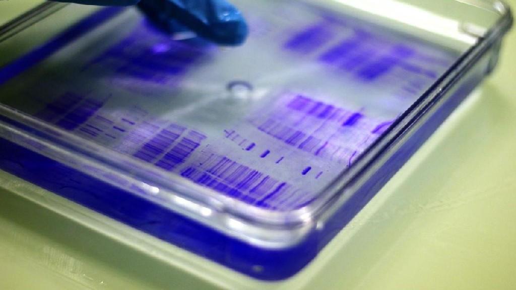 wpid-24841_biotecologie.jpg