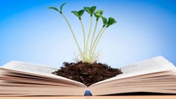 Autorizzazione integrata ambientale (Aia): chiarimenti sulla Relazione di riferimento