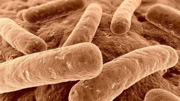 Legionella negli impianti: arrivano i sensori plasmonici per il monitoraggio