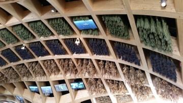 Expo 2015, completato il Padiglione della Francia in legno lamellare