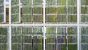 Expo 2015, il Padiglione Usa ha una fattoria verticale motorizzata