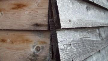 Variazione cromatica del legno: cause e rimedi