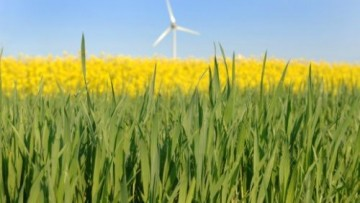 Le bioenergie in Italia alla prova del decreto rinnovabili