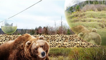Lo zoo del futuro senza gabbie