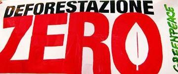 Greenpeace i libri italiani partecipano al disboscamento  delle foreste