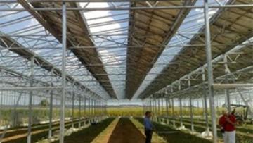 Fotovoltaico in serra, Sardegna all'avanguardia