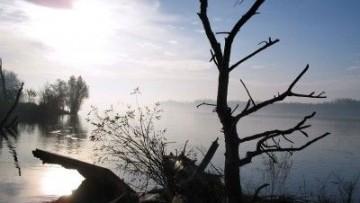 Nasce l'osservatorio mondiale sull'inquinamento da mercurio
