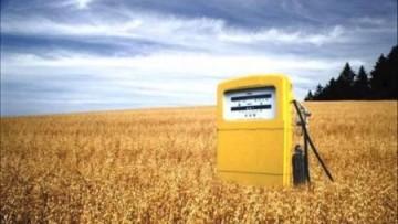 Sulla terra sono disponibili 702 milioni di ettari per i biocarburanti