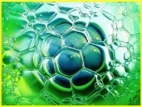 wpid-9564_biofuelssperiamo.jpg