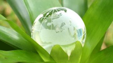 Sistemi di gestione ambientale Emas: scarica l'e-book gratuito