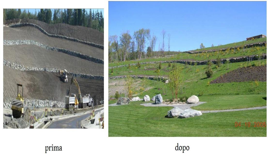 Utilizzo del compost mediante pala meccanica a Seattle