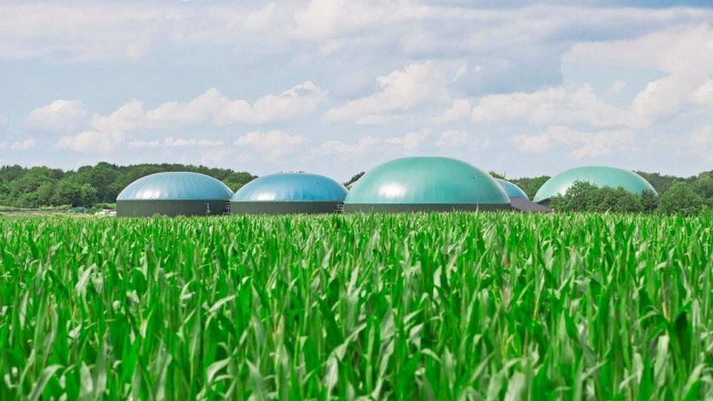 collegato ambientale imp_biogas
