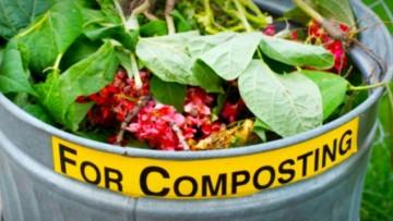 Collegato ambientale: strategie per la riduzione dei rifiuti organici