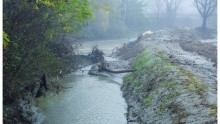 Collegato ambientale: tutela del suolo e delle acque, introduzione del PSEA