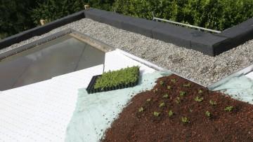 Gli strati funzionali del verde pensile, dalla falda artificiale allo strato vegetativo