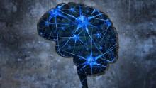 Bioingegneria: creati nanogel che portano l'insulina direttamente al cervello