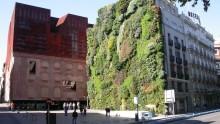 Come funziona il Mur Vegetal di Patrick Blanc