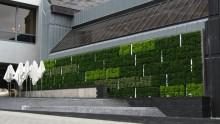 Quando il verde verticale serve alla riqualificazione edilizia