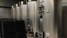 Aziende vinicole: perché è importante ridurre la vulnerabilità sismica