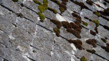 L'amianto nelle architetture del Novecento: dove si trova e come fare la bonifica