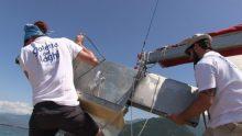 Goletta dei Laghi 2016: acque fuorilegge in un caso su due