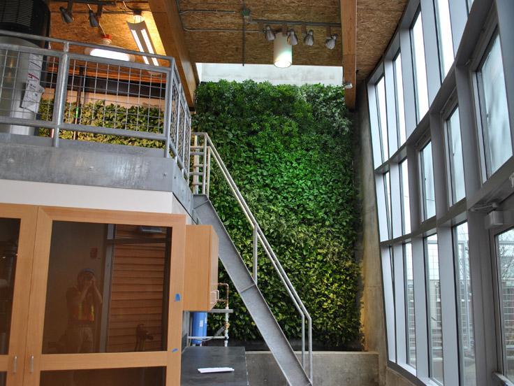 KMD Architects, Bertschi School, Seattle (USA), 2011. L'inverdimento parietale realizzato dalla ditta nordamericana G-SKY provvede alla depurazione di tutte le acque saponate prodotte nella scuola. I vani tecnici necessitati dal sistema si trovano nello zoccolo basamentale della parete e nel sottoscala. (Credits: http://gsky.com/projects/bertschi-school)
