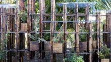 Il bambù è il nostro acciaio: due padiglioni temporanei di Vo Trong Nghia