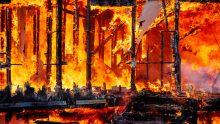 La velocità di carbonizzazione in strutture in legno protette e non protette
