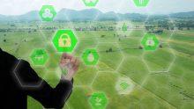 Digitalizzazione e ICT nell'agroalimentare italiano: fare il salto, adesso
