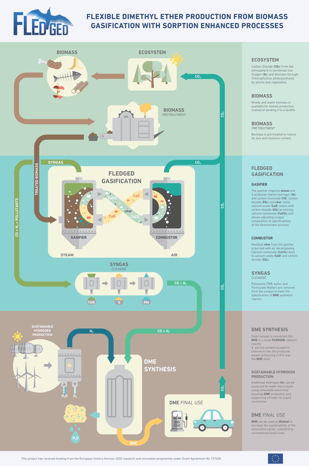Il concept del progetto FLEDGED: dalla biomassa al biocombustibile tramite un processo reso più efficiente dall'uso di sorbenti