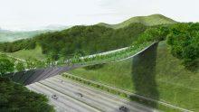 Il ponte verde del futuro: Eco Bridge in Corea del Sud