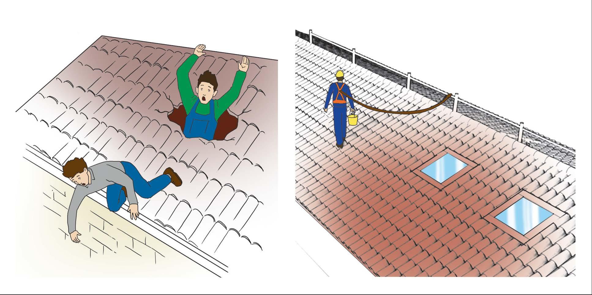 Lavori speciali sui tetti