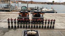Intelligenza artificiale, a Venezia arrivano i pesci robot