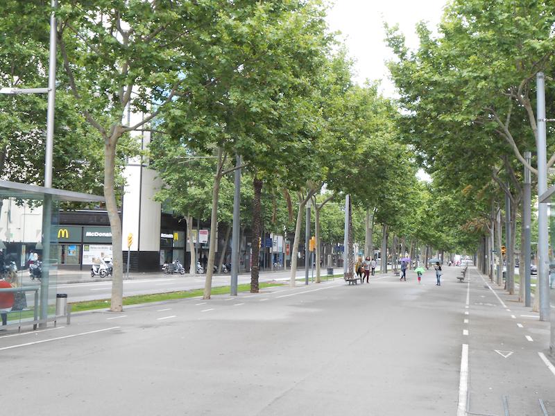 Tree planting nel quartiere @22 di Barcellona, Credits: M. B. Andreucci