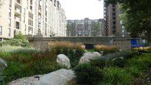 Green infrastructure per quartieri e città: cosa sono e a cosa servono