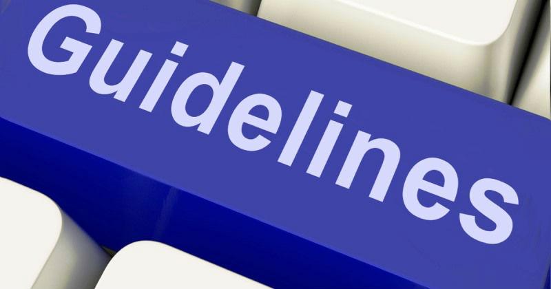 linee guida 8 anac
