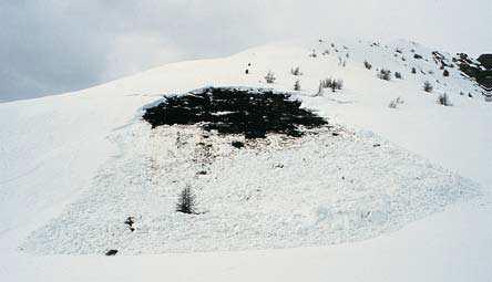 Foto 3 Valanga di versante, di fondo e a lastroni