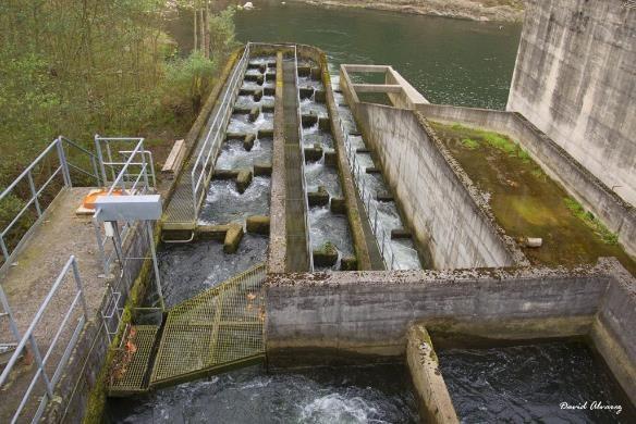 Figura 1 – Spagna - Una delle sette barriere del Fiume Nalon  (Fonte: http://amber.international/)