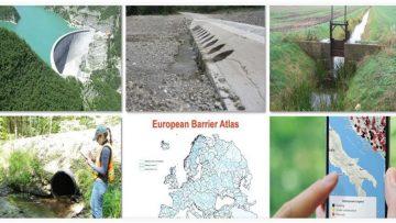 Progetto Amber: un atlante delle barriere esistenti sui fiumi europei