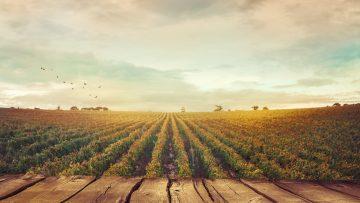Bando Isi 2017 Inail: scadenze del 2018, destinatari, fondi
