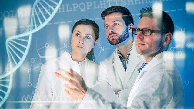 Ingegneria Biomedica in Italia: atenei, materie e sbocchi lavorativi