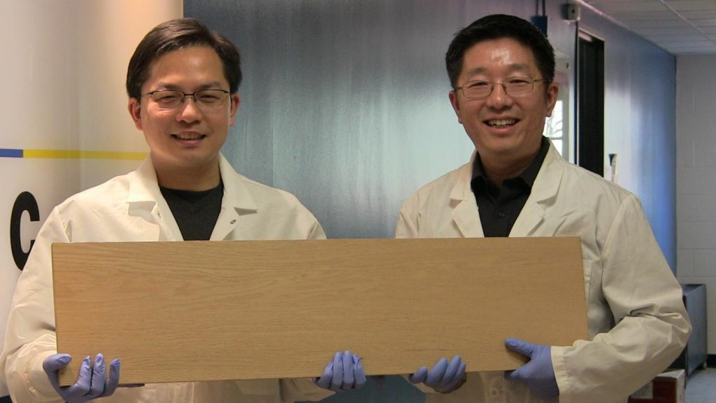 Prof. Liangbing Hu (sx) e Prof. Teng Li (dx) - courtesy University of Maryland