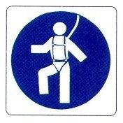 E' obbligatoria la cintura di sicurezza